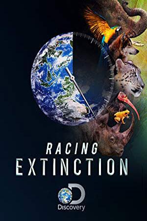 Tanweer - Racing Extinction